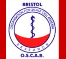 Bristol OSCAR